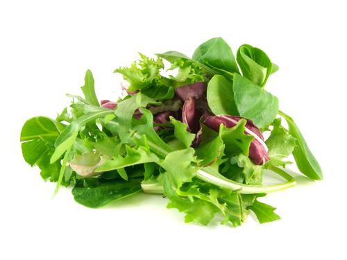 folhas de saladas